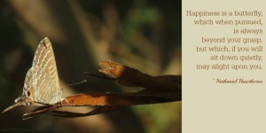 Happiness is a butterfly quote from Nathanial Hawthorne