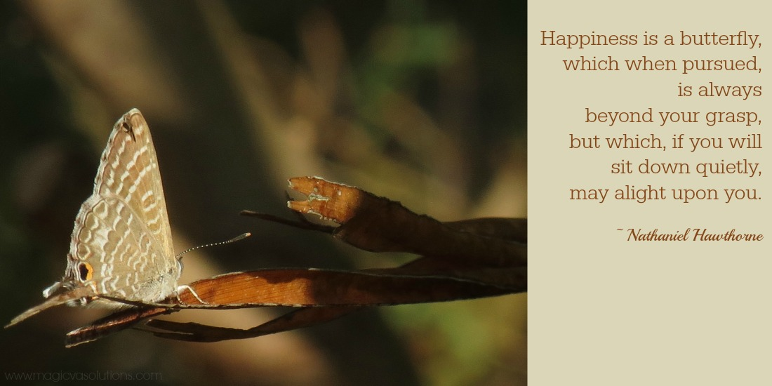 Quote – Happiness is a Butterfly