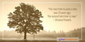 """""""Thebest time to plant a treewas 20 years ago. The secondbest timeis now."""" ~ Chinese Proverb."""
