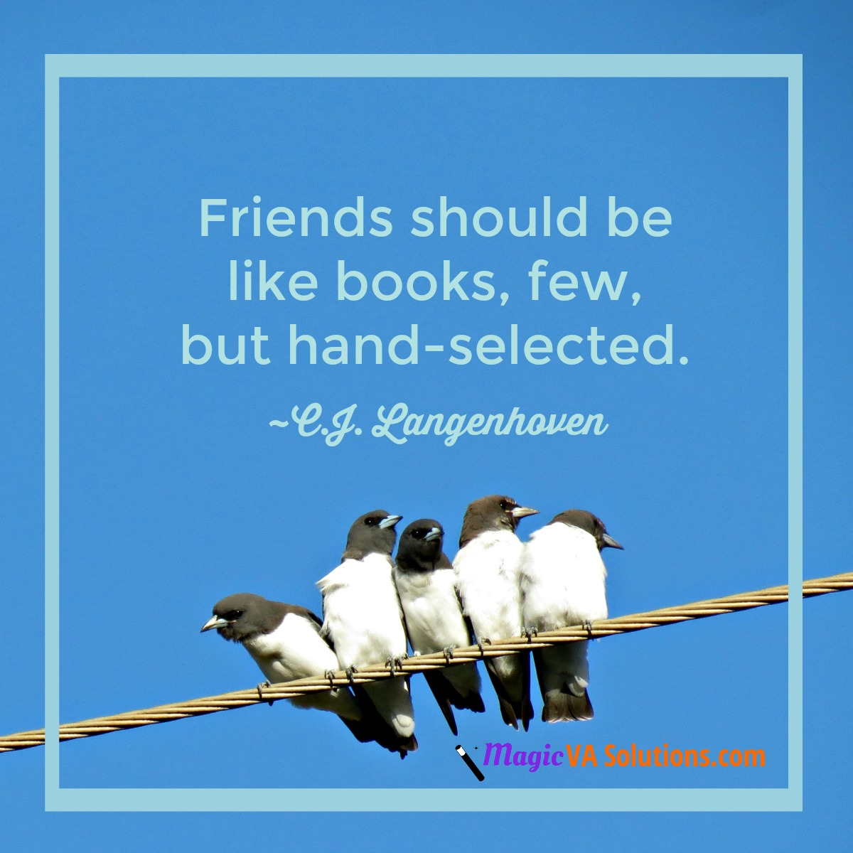 Friends should be like books, few, but hand-selected. ~ C J Langenhoven