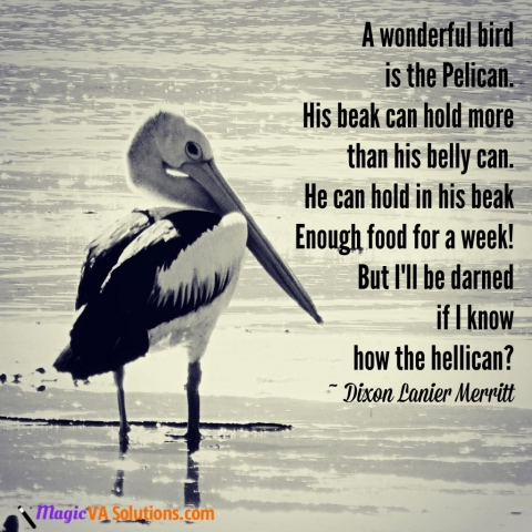 A wonderful bird is the Pelican. His beak can hold more than his belly can. He can hold in his beak enough food for a week! But I'll be darned if I know how the hellican? ~ Dixon Lanier Merritt
